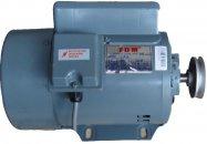 Двигатель FDM 400W/380V, 1425 об/мин индукционный